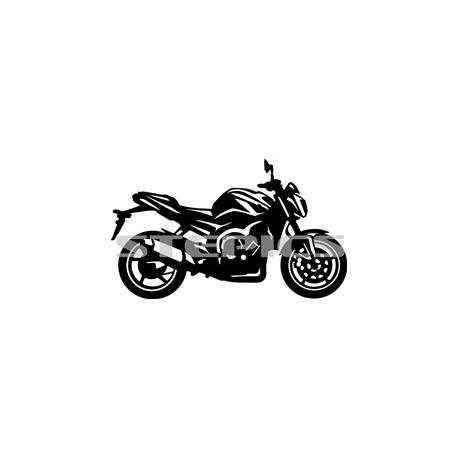 Yamaha FZ 1 N bok