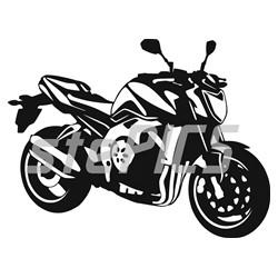Yamaha FZ 1 N